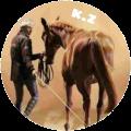 konie zwiadowców