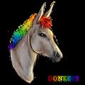 speeding donkeys