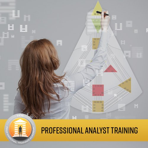 Professional Analyst Training Program