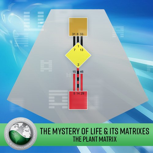 The Mystery of Life & its Matrixes: Lecture Series - The Plant Matrix