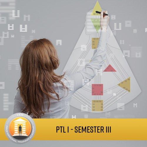 Professional Training Level I Analyst Program - Semester 3
