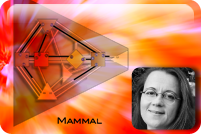The Mammalian Matrix -cover image