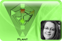The Plant Matrix -cover image