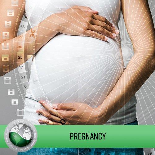 Gravidez  (Pregnancy)