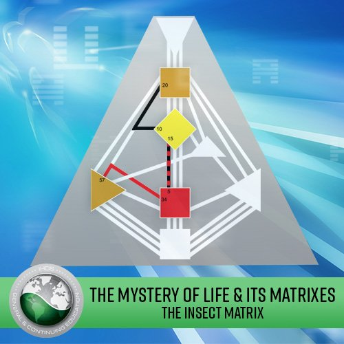 The Mystery of Life & its Matrixes: Lecture Series - The Insect Matrix