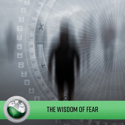 The Wisdom of Fear - Embracing the Elephant in the Room