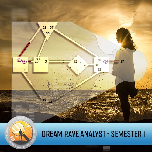 DreamRave Analyst Certification - Semester 1