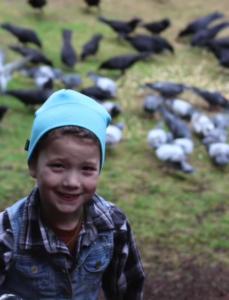 gabi and birds