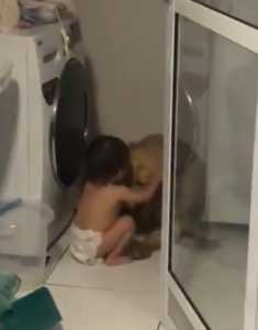 toddler comforts dog