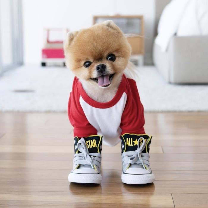 jiff in sneakers