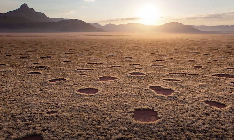 circles of namibia