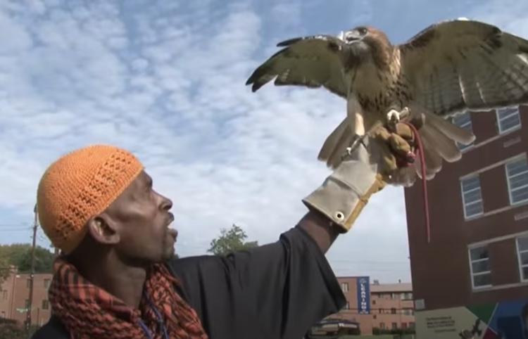 master falconer and his falcon