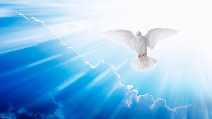 espiritu-santo310517
