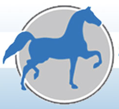 NATIONAL SHOW HORSE FINALS – LIVE FEED