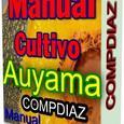 Manual Siembra Y Cultivo De La Auyama O Calabaza Excelente