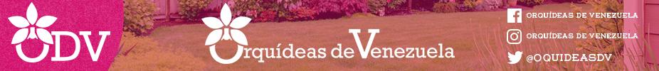 Orquideas de Venezuela