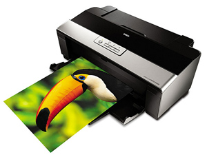 Epson Stylus Photo R1900 Ink Jet Printer