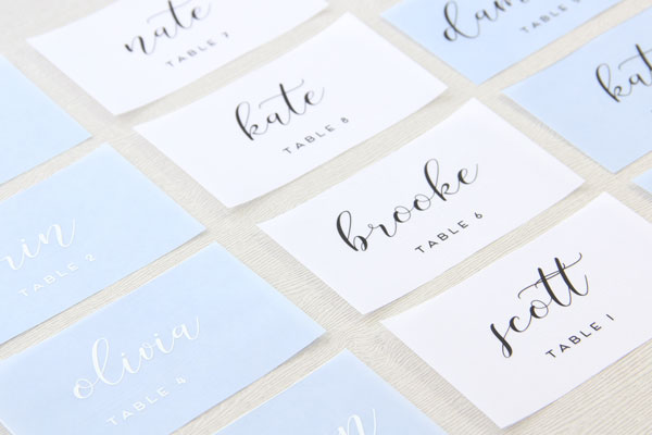 White Ink Vellum Printed Place Cards
