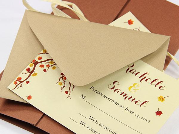 A1 Envelopes   3 5/8 x 5 1/8 Envelopes - LCI Paper