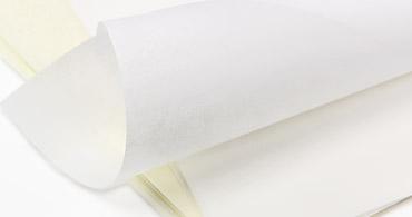 Pergamenata Parchment Vellum