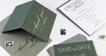 Sage & Seedling Cards
