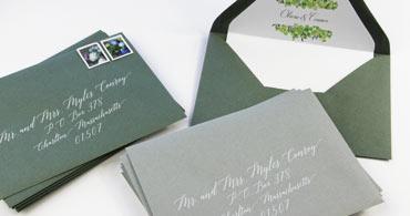 Sage & Seedling Envelopes
