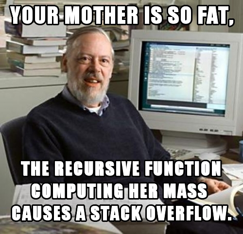 Your mother is so fat, the recursive function computing her mass  causes a stack overflow.