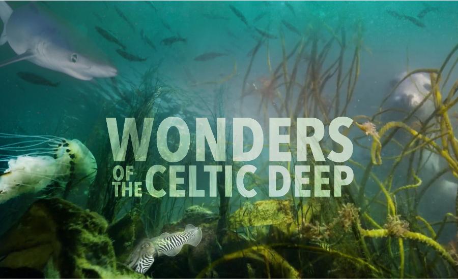 BBC's Wonders of the Celtic Deep soundtrack by Paul Mealor
