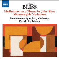 Bliss: Meditations and Variations