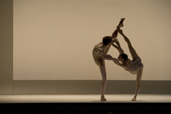 Details of The Royal Ballet's 2013/14 Season have been announced…