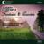 Carducci Quartet release Horovitz disc