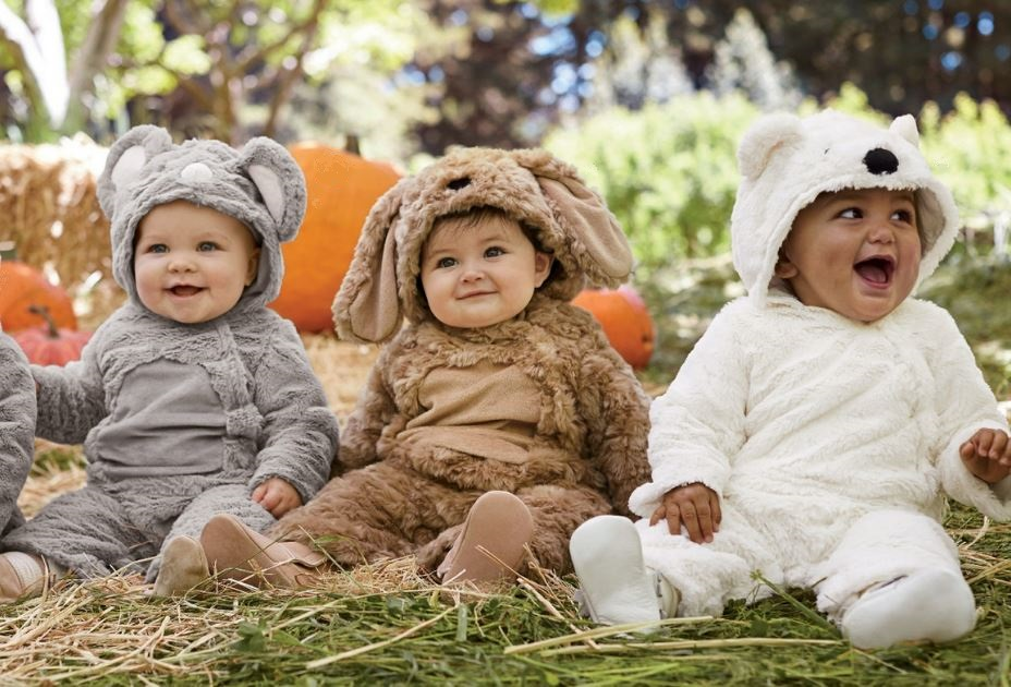 babys first holiday celebrations should be incredibly special and memorable babys first halloween is no exception its not about baby remembering the