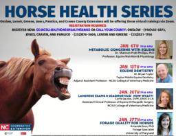 Horse health series