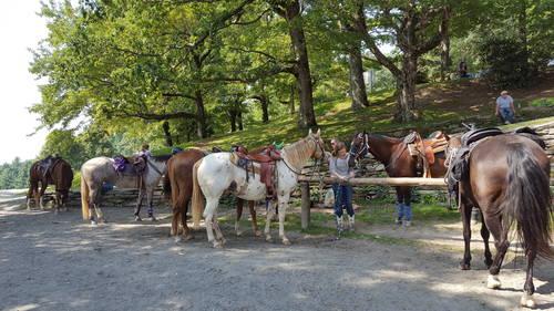 Hugh Causey Trail Ride