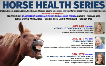 Virtual Equine Education from NC Cooperative Extension