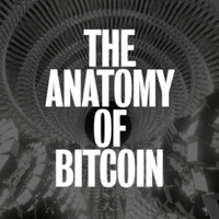 The Anatomy of Bitcoin
