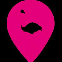 Flamingo Group Inc