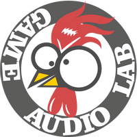 MadRooster Game Audio Lab