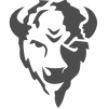 Bison Technologies