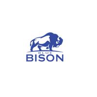 Blue Bison Analytics, Inc.