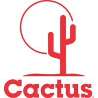 Cactus Wellhead