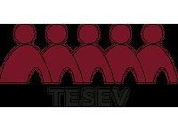 Türkiye Ekonomik ve Sosyal Etüdler Vakfı (TESEV)