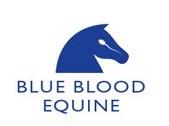 Blue Blood Equine