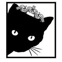 Feline Fanatics In-home Pet Care