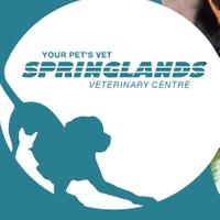 Springlands Veterinary Centre Ltd