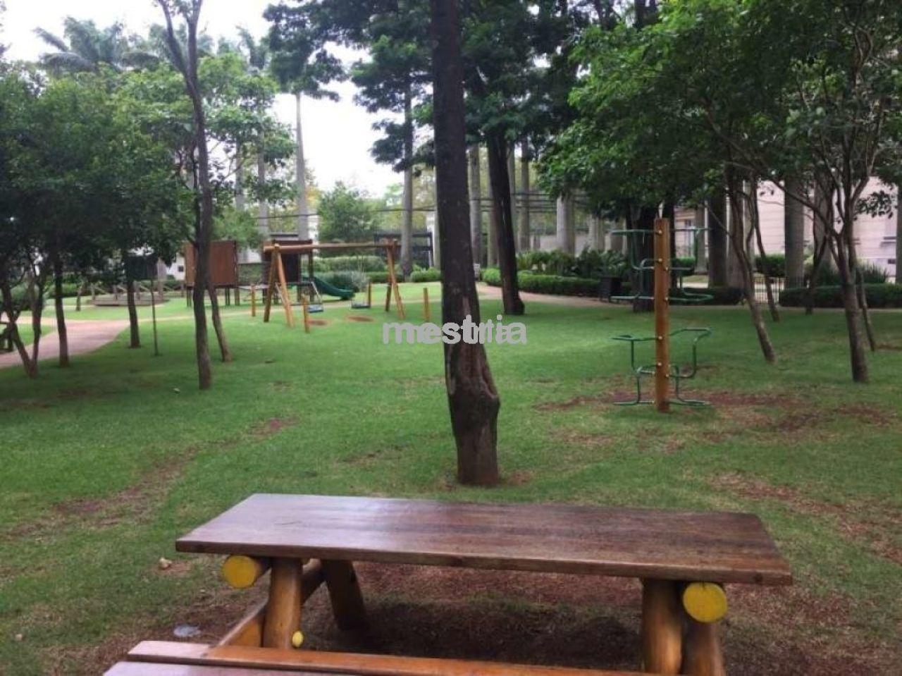 Foto 3 :: DI24312