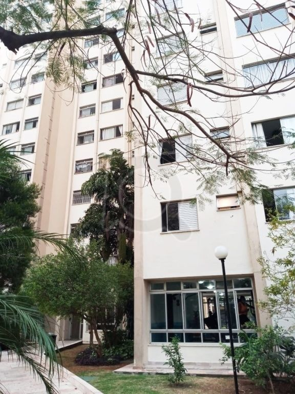 Apartamento para Locação - Jardim Andaraí