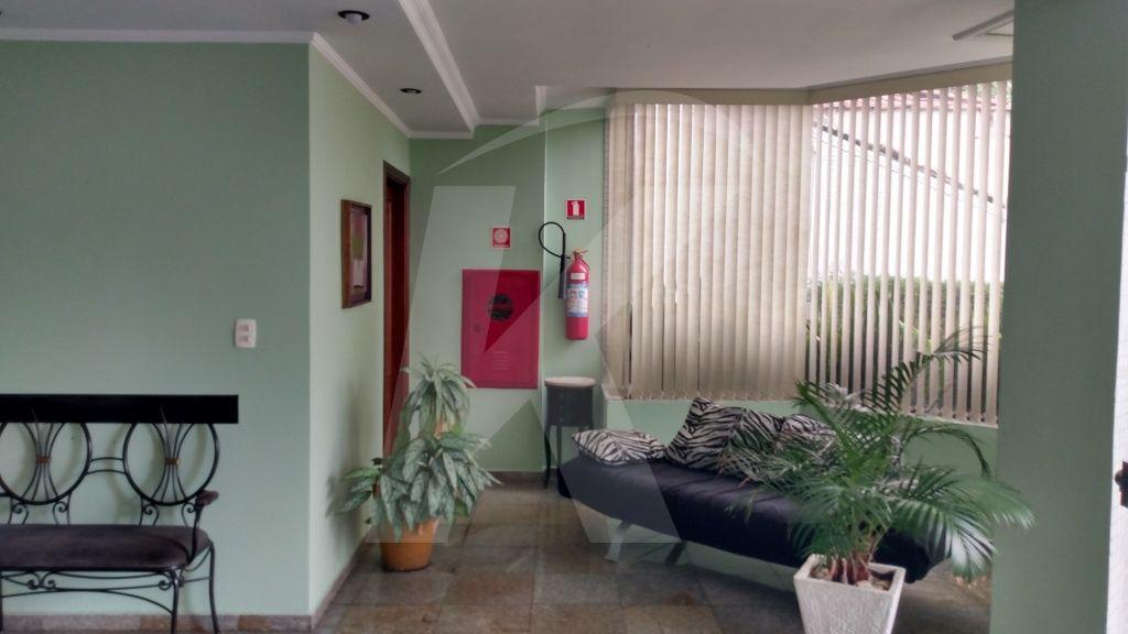 Comprar - Apartamento - Vila Paulicéia - 3 dormitórios.