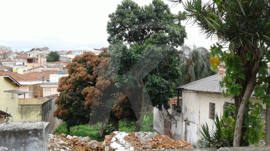 Terreno Vila Gustavo -  Dormitório(s) - São Paulo - SP - REF. KA1356