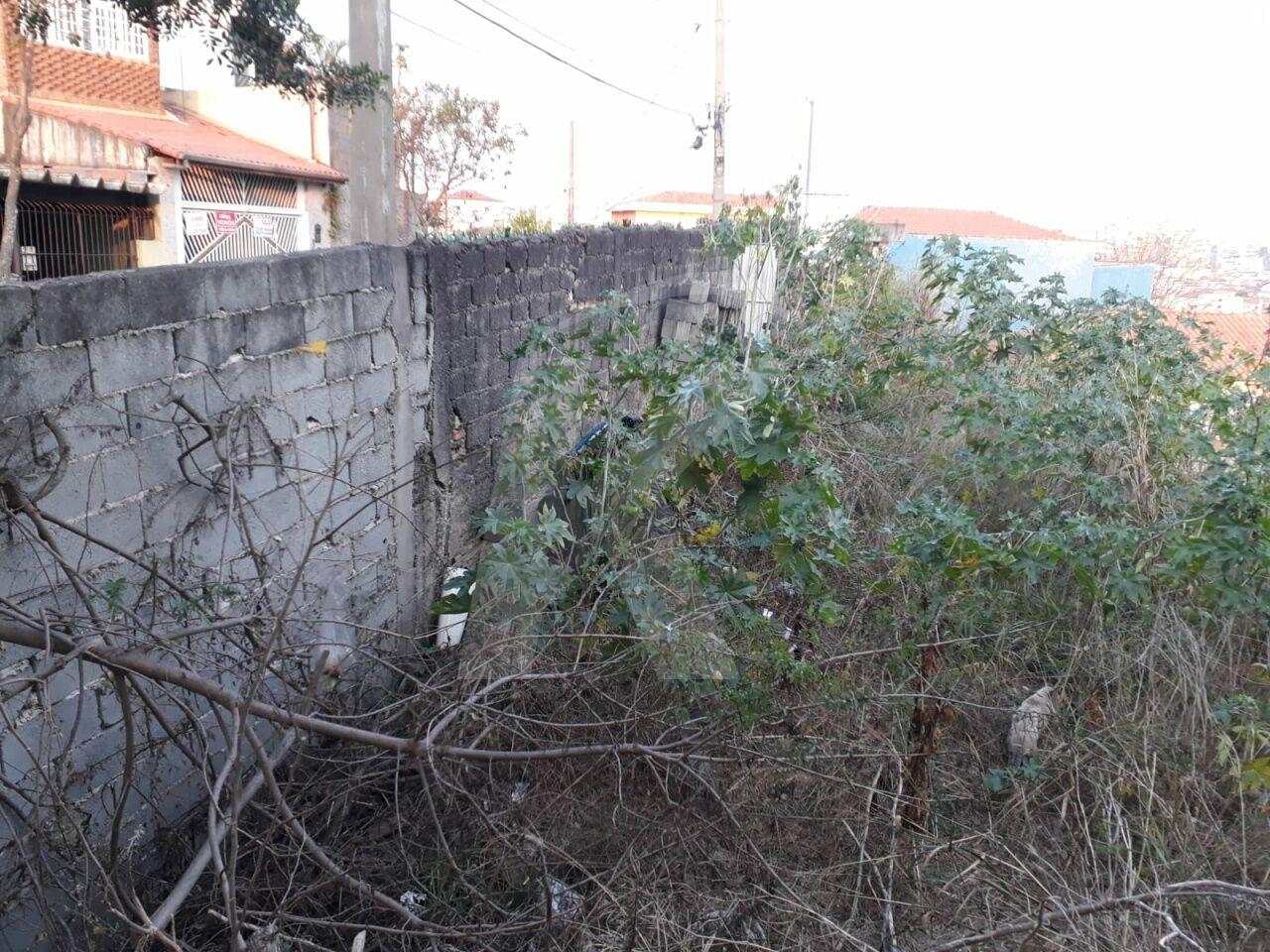 Terreno Vila Gustavo -  Dormitório(s) - São Paulo - SP - REF. KA14234